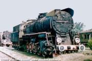 Ty51-9